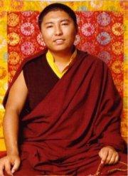 Drubwang Tsoknyi Rinpoche