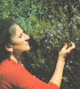 Rosalba Gioffrè
