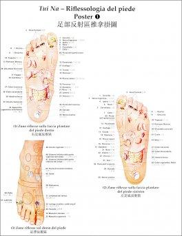 Macrolibrarsi - 2 Poster di Tui Na Riflessologia del Piede