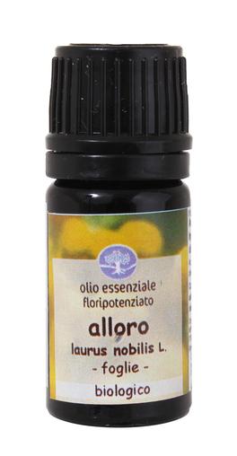 Alloro - Olio Essenziale Floripotenziato