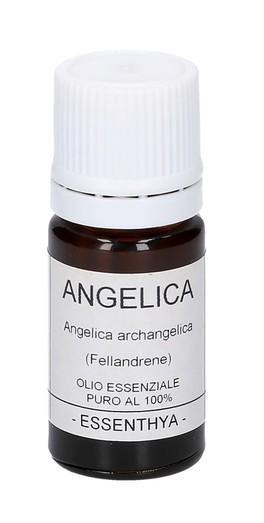 Angelica - Olio Essenziale Puro - 5 ml