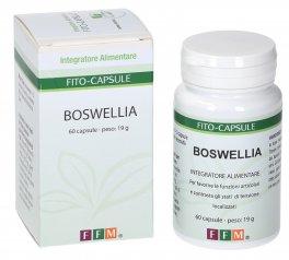Boswellia - Capsule
