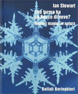 Che forma ha un fiocco di neve?
