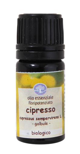 Cipresso - Olio Essenziale Floripotenziato