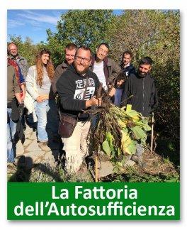 Corso teorico-pratico di Food Forest. IV Edizione 2020