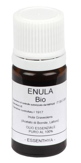 Enula - Olio Essenziale Puro