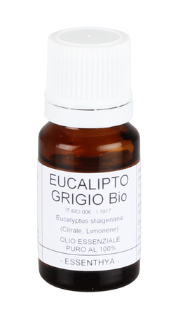 Eucalipto Grigio Bio - Olio Essenziale Puro
