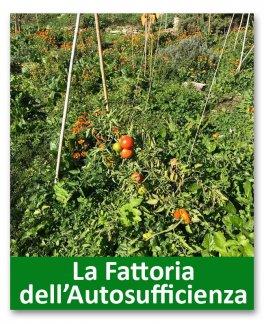 Food Forest - Edizione Marzo 2018