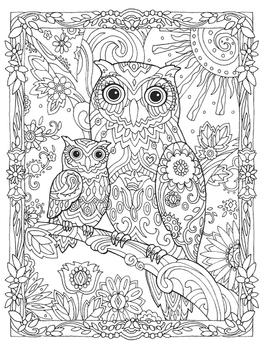 Disegni Da Colorare Art Therapy.Gufi Libro Di Marjorie Sarnat