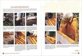 L'Apicoltura: Manuale Pratico Illustrato