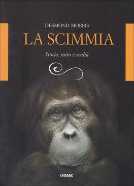 La Scimmia