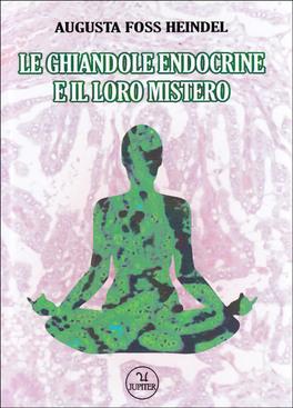 Le Ghiandole Endocrine e il loro Mistero