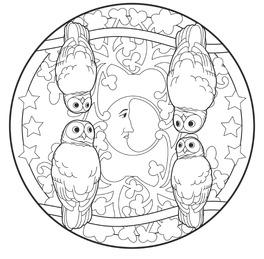 I Mandala Degli Animali Del Bosco Libro Di