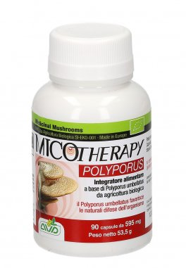 Micotherapy - Polyporus