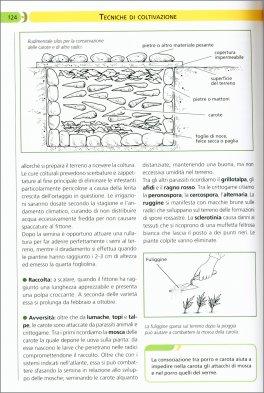 Calendario Lunare Orto.Orto Manuale Pratico Libro