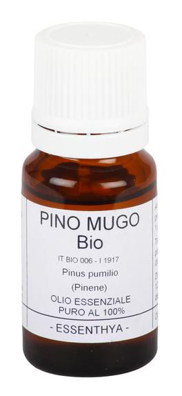 Pino Mugo Bio - Olio Essenziale