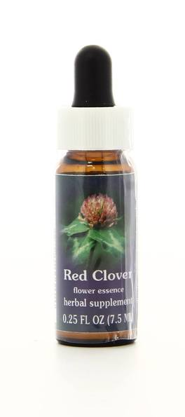 Red Clover - Fiori californiani