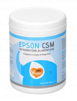 Sale di Epson Csm