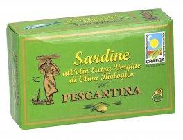 Sardine all'Olio Extra Vergine di Oliva - Pescantina