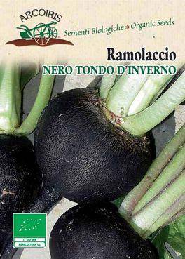 Semi di Ramolaccio Nero Tondo d'Inverno - 4 gr - BU059