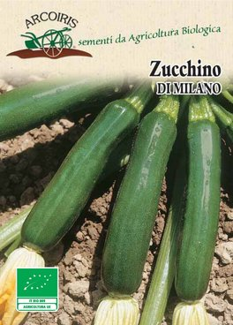 Semi di Zucchino di Milano - 7 gr - BU034