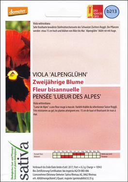 Viola del Pensiero Lueur des Alpes - b213