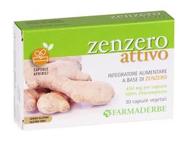 Zenzero Attivo - Integratore alimentare a base di Zenzero