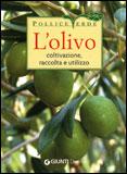 Libro olivo