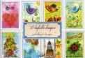 16 Biglietti d'Auguri Pronti all'uso, per i Tuoi Auguri - Cornice Azzurra  - Libro