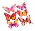 Adesivi Decorativi Farfalle - 2631