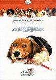 Aforismi Canini per 365 Giorni - Quaderno per Appunti