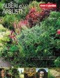 Alberi e Arbusti — Libro