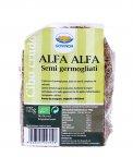Alfa Alfa - Semi Germogliati
