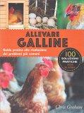 Allevare Galline - Libro