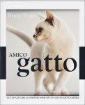 Amico Gatto
