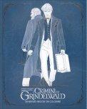Animali Fantastici - I Crimini di Grindelwald - Avventure Magiche da Colorare — Libro