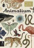 Animalium  — Libro