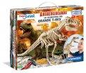 Archeogiocando - Lo Scheletro del T-rex