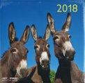 Asini - Calendario 2018