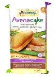 Avena Cake senza Glutine - Mini Plumcake