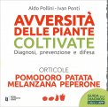 Avversità delle Piante Coltivate - Pomodoro, Patata, Melanzane, Peperone - Libro