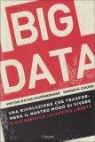 Big Data  - Libro