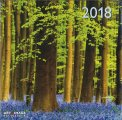 Boschi - Calendario 2018