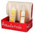 Box Natale Coccole Capelli di Seta: Shampoo Lavaggi Frequenti + Balsamo Volumizzante