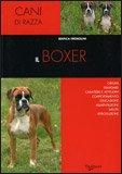 Il Boxer