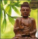 Buddha Card 1  - CD