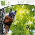 Call of the Forest  — CD