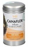 Canaflor - Infuso di Fiori di Canapa - No Dol: Muscoli ed Articolazioni