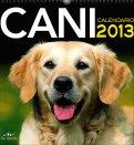 Cani - Calendario 2013