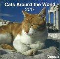 Cats Around the World - Calendario 2017